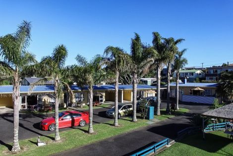 Raglan Palm Beach Motel | Nikau Palm Suite